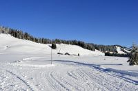 Alpe_Moos_Steinhauser_Riefensberg_Winter_102