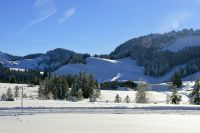 Alpe_Moos_Steinhauser_Riefensberg_Winter_104