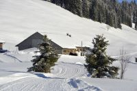 Alpe_Moos_Steinhauser_Riefensberg_Winter_106