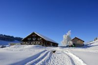 Alpe_Moos_Steinhauser_Riefensberg_Winter_114