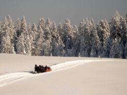 Alpe_Moos_Steinhauser_Riefensberg_Winter_52