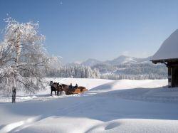 Alpe_Moos_Steinhauser_Riefensberg_Winter_57