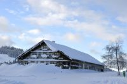 Alpe_Moos_Steinhauser_Riefensberg_Winter_94