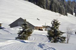 Alpe_Moos_Steinhauser_Riefensberg_Winter_106