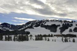 Alpe_Moos_Steinhauser_Riefensberg_Winter_112