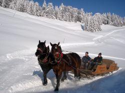 Alpe_Moos_Steinhauser_Riefensberg_Winter_59