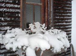 Alpe_Moos_Steinhauser_Riefensberg_Winter_78