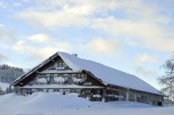 Alpe_Moos_Steinhauser_Riefensberg_Winter_95